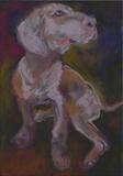 Mutt by Erica Shipley, Painting, Pastel